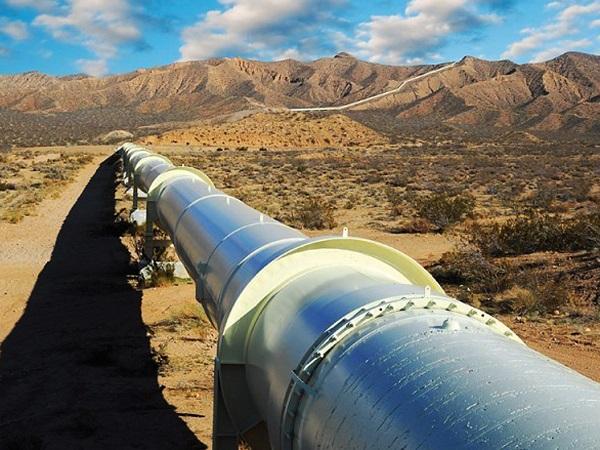 Позитивно оценил поставки сжиженнного газа изсоедененных штатов вЕвропу Путин